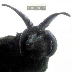 CULT: The Cult (CD) (akciós!)