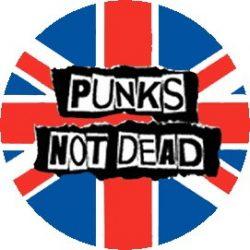 PUNKS NOT DEAD - Flag (jelvény, 2,5 cm)