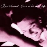 STEVE WINWOOD: Back In The High Life (CD)