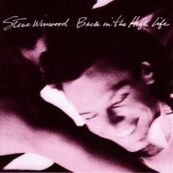 STEVE WINWOOD: Back In The High Life (CD)