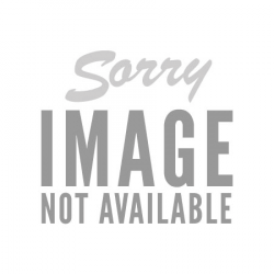 DIO: Flaming Logo (póló)