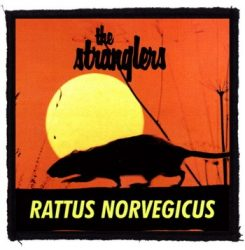 STRANGLERS: Rattus Norvegicus (95x95) (felvarró)