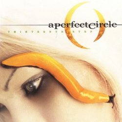A PERFECT CIRCLE: Thirteenth Step (2LP)