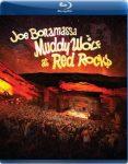 JOE BONAMASSA: Muddy Waters Tribute (Blu-ray)