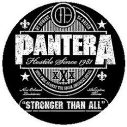 PANTERA: Stronger Than All (jelvény, 2,5 cm)