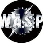 WASP: Logo (jelvény, 2,5 cm)