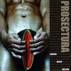 PROSECTURA: Sándor, József, melegek (CD)