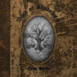 ZAKK WYLDE: Book Of Shadows II. (CD)