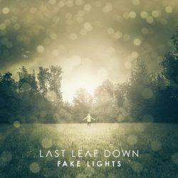 LAST LEAF DOWN: Fake Lights (CD)