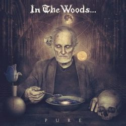 IN THE WOODS: Pure (digipack) (CD)