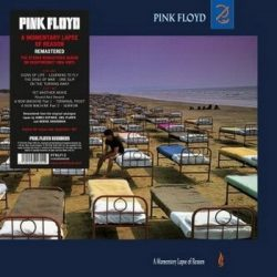 PINK FLOYD: A Momentary Lapse Of Reason (LP, 180 gr)