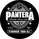 PANTERA: Stronger Than All (nagy jelvény, 3,7 cm)