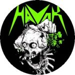 HAVOK: Skull (jelvény, 2,5 cm)