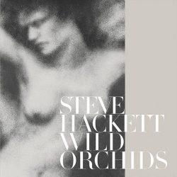 STEVE HACKETT: Wild Orchids (CD)