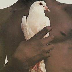 SANTANA: Greatest Hits 1974 (LP)
