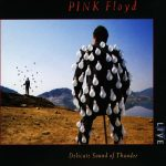 PINK FLOYD: Delicate Sound Of Thunder (2LP, 180 gr)