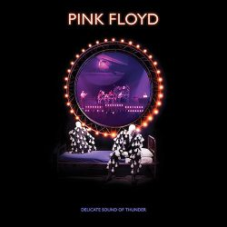 PINK FLOYD: Delicate Sound Of Thunder (2CD, 2020 reissue)